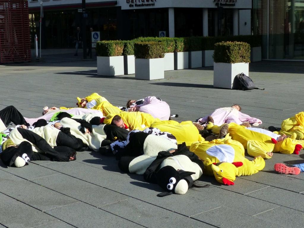 Die-In bei der Straßenaktion in der Ulmer Innenstadt